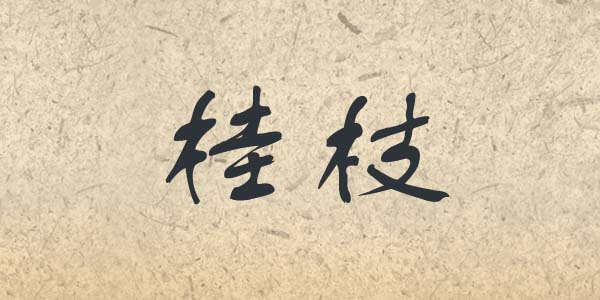 Gui Zhi written in Chinese